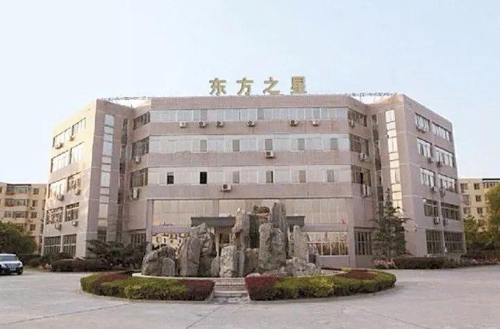 【南阳名人辞典】东方之星集团总经理胡晓亚图片