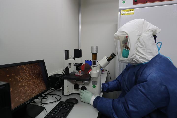 钟南山团队从患者粪便分离出活病毒