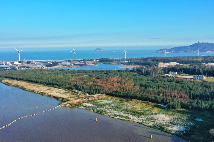 福建漳州,这里的废弃矿区披绿重生