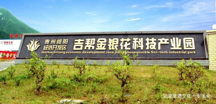 """中国金银花之乡——绥阳县""""三转三变""""做大金银花产业"""